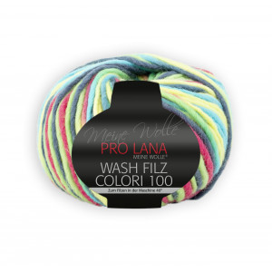 Wash-Filz colori multicolor